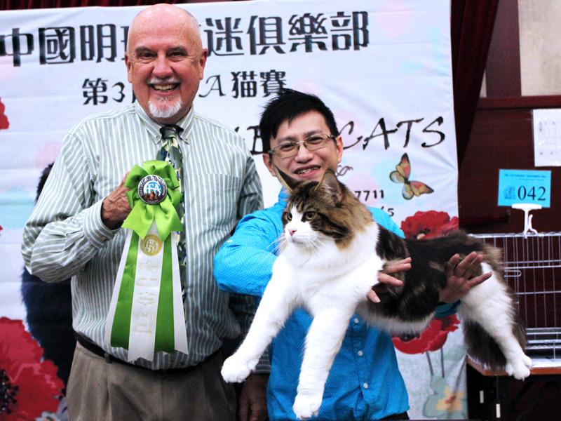 Beijing Cat Show