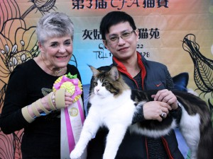 Beijing, China Cat Show
