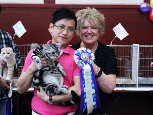 Beijing, China Cat Show