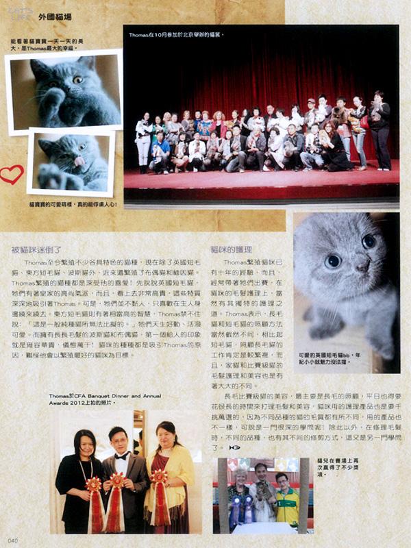 Cat's Life – Hong Kong Magazine Interview