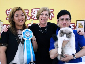 Chengdu, China Cat Show 2013