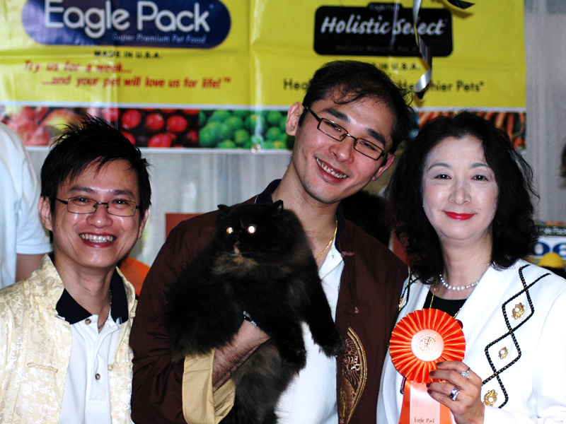 SCC Eagle Pack Cat Show