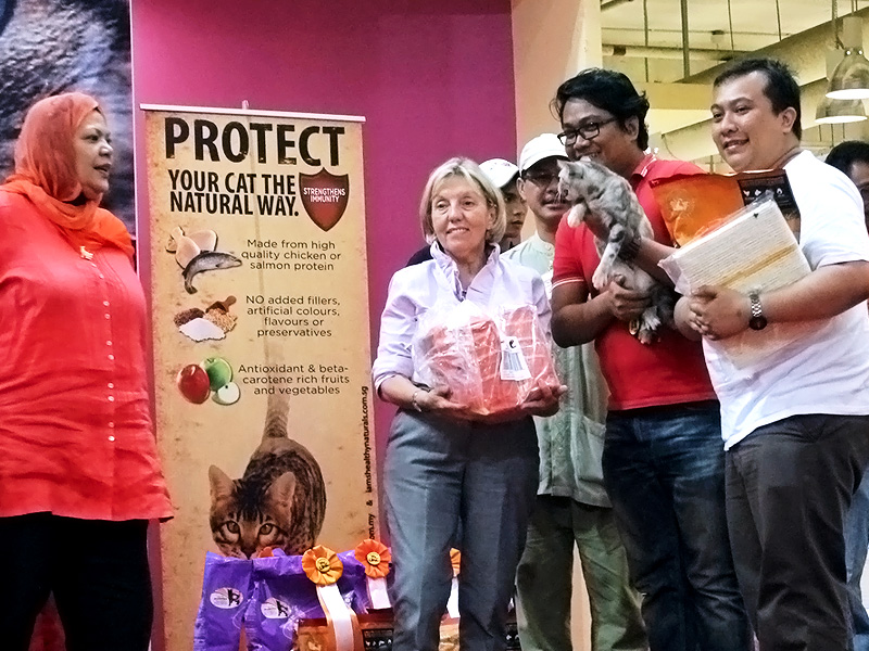 Cat Lovers' Club, Malaysia Judging