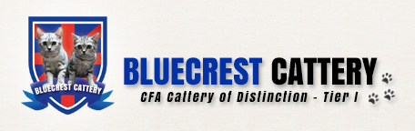 BlueCrestCattery
