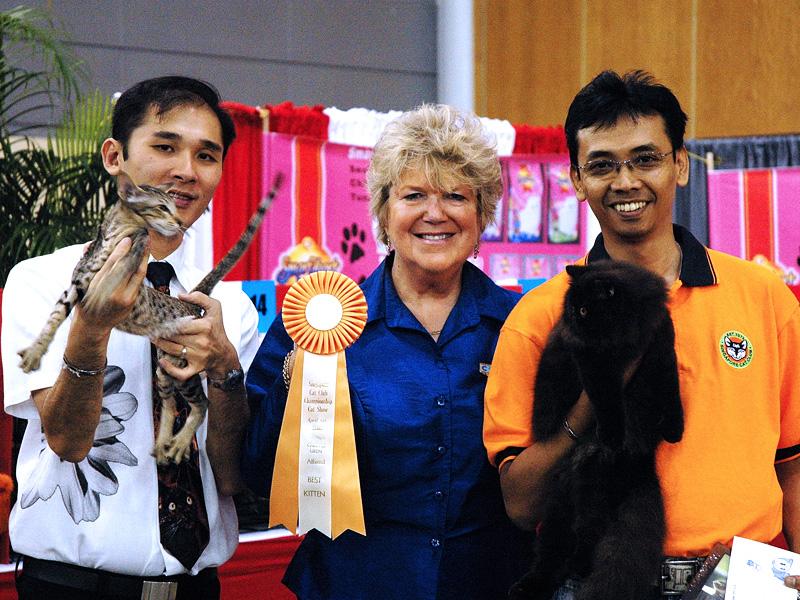 SCC 35th Anniversary Championship Cat Show