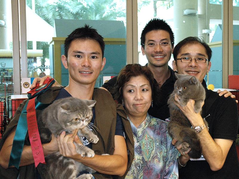SCC Cat Show