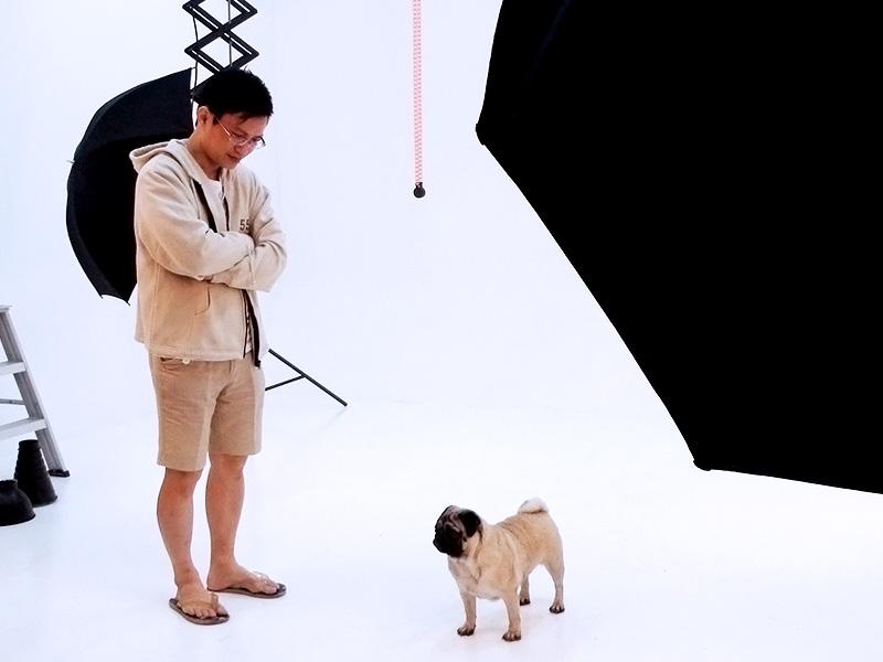 Addiction Petfood Photoshoot (Behind The Scene)