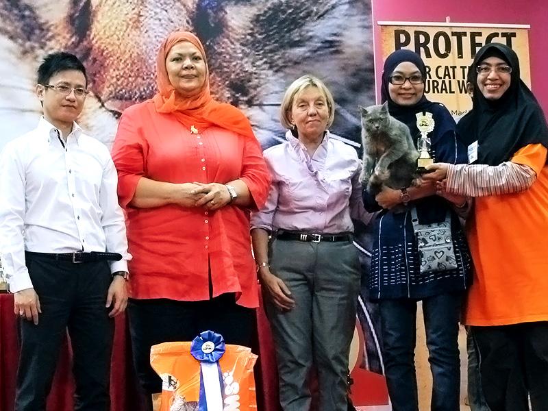 Cat Lovers' Club, Malaysia Judging
